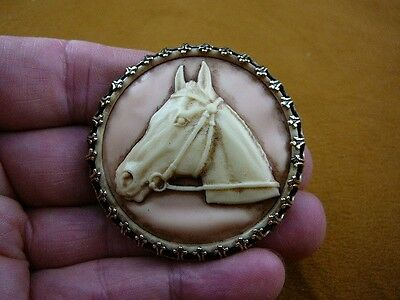 (CL54-29) HORSE RACE Stallion head mare pink CAMEO round Brooch Pin Pendant