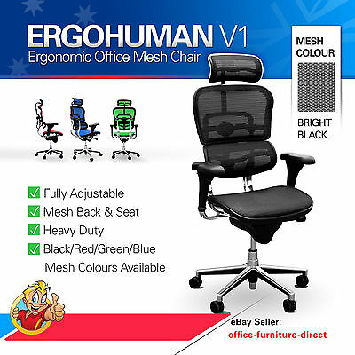 Ergohuman V1 Ergonomic Deluxe Office Computer Chair, Raynor Gaming Mesh Chairs