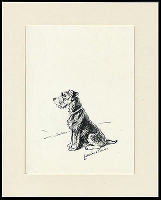 LAKELAND TERRIER  LOVELY 1930'S DOG ART PRINT by MAC LUCY DAWSON READY MOUNTED