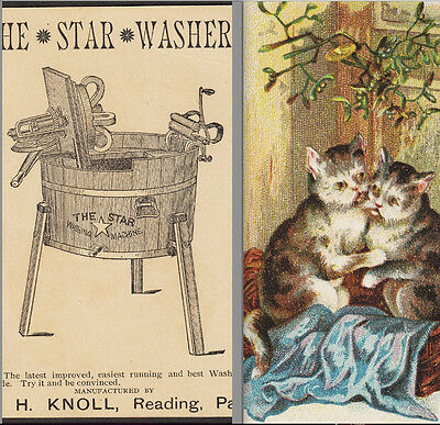 Antique 1800's Star Washing Machine Cats Kissing Mistletoe Knoll Reading PA Card