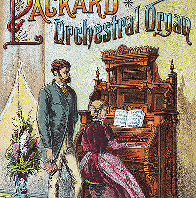 1880's St Paul Minneapolis Packard Organ Fort Wayne music Dyer Advertising Card