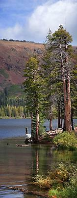 High resolution landscape panoramic photography - Mammoth Lakes