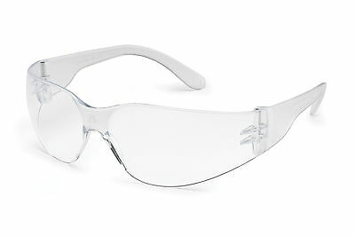 10 Gateway Starlite Safety Glasses - Clear Anti-Fog SM Small Frame 3679