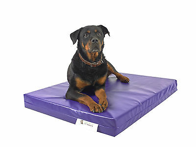 Purple Chew Resistant Dog Bed - X Large - Waterproof - Heavy Duty