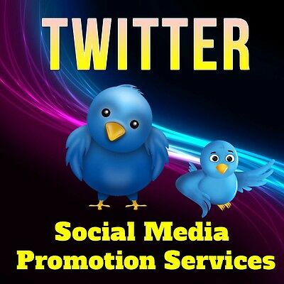 Let's Promote Your Ebay Store or Auction to 100,000 Twitter followers!