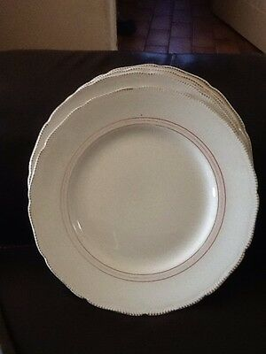 6 Large Royal Swan England  Dinner Plates Cream Gold Stripe 25Cm Wide