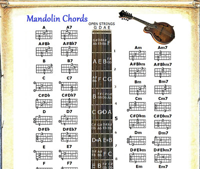 Mandolin Chords Chart Note Locator Fretboard Small Chart