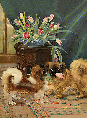 Pekingese Dogs Eating Tulips Lovely Dog Print Greetings Note Card