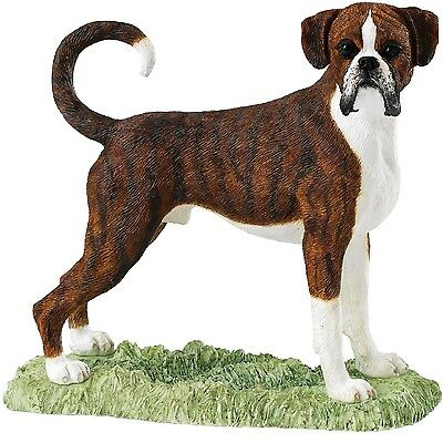 Border Fine Arts Dog Collection A26018 Boxer Brindle And White