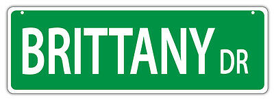 Plastic Street Signs: BRITTANY DRIVE (BRITTANY SPANIEL)   Dogs, Gifts