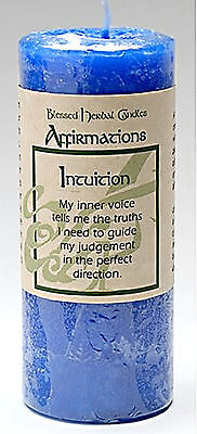 """4"""" Coventry Creations Blue INTUITION Blessed Herbal PILLAR Spell CANDLE Wicca"""