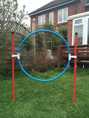 Dog Agility Coloured Basic Hoop by Jessejump