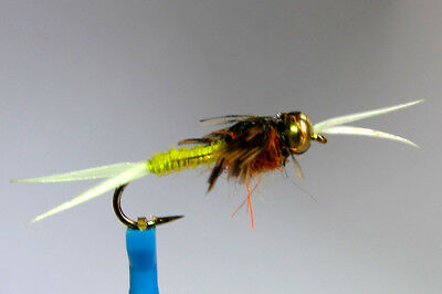 10 x Mouche Nymphe STONEFLY POXYBACK CHARTREUSE bille H12/14 horned fly trout