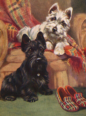 Scottish Terrier Charming Scottie, Westie And Slippers Dog Greetings Note Card