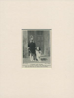 PYRENEAN MOUNTAIN DOG AND SMALL GIRL OLD 1930'S PRINT MOUNTED READY TO FRAME