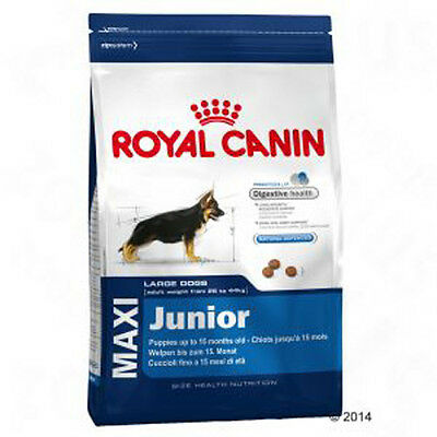 Royal Canin Maxi Junior - Best prices!