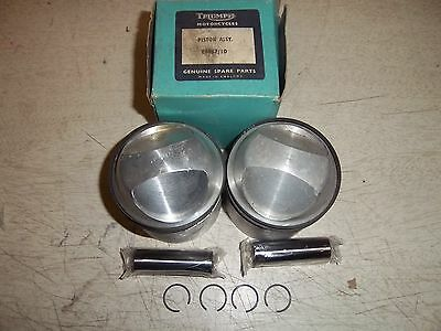 ORIGINAL MERIDEN TRIUMPH T120 PISTON 11-1 COMP. RATIO 71.25mm BORE 70-6867/10