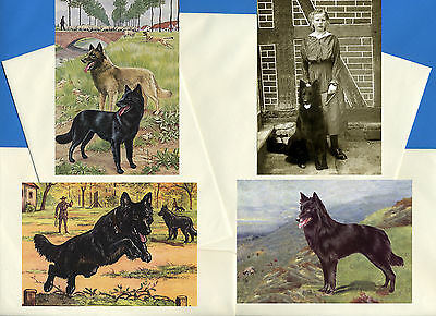 Belgian Shepherd Dog Pack Of 4 Vintage Style Dog Print Greetings Note Cards