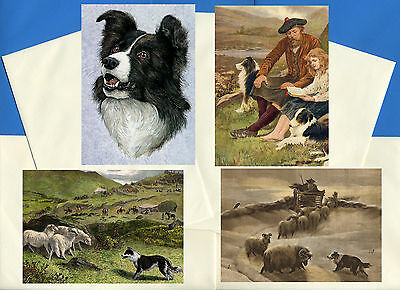 Border Collie Pack Of 4 Vintage Style Dog Print Greetings Note Cards #3