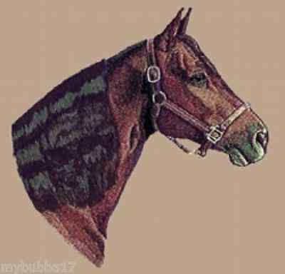MORGAN HORSE HEAD STUNNING DESIGN SET OF 2 HAND TOWELS EMBROIDERED