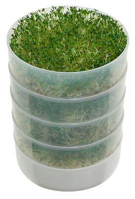 Victorio VKP1014 4-Tray Kitchen Seed Sprouter BPA FREE