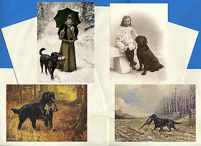 Flat Coated Retriever Pack Of 4 Vintage Style Dog Print Greetings Note Cards #4