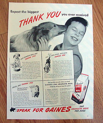 1944 Gaines Dog Food Ad  Collie Dog