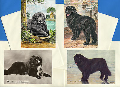 Newfoundland Pack Of 4 Vintage Style Dog Print Greetings Note Cards #1