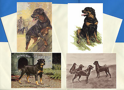 Rottweiler Pack Of 4 Vintage Style Dog Print Greetings Note Cards