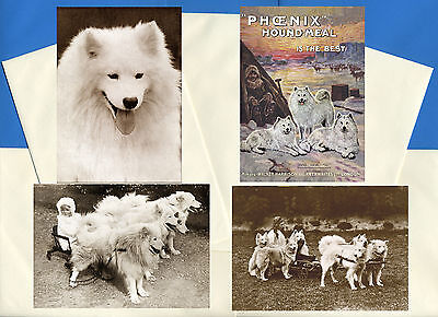 Samoyed Pack Of 4 Vintage Style Dog Print Greetings Note Cards #1