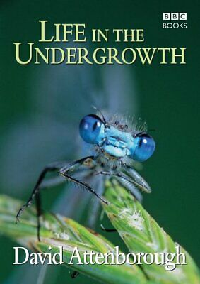 Life in the Undergrowth by David Attenborough Productions Ltd Hardback Book The