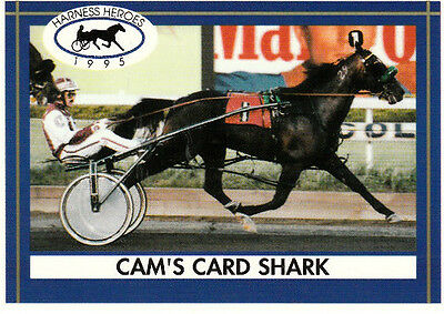 CAM'S CARD SHARK 1994 HORSE OF THE YEAR STANDARDBRED RACE HORSE COLLECTOR CARD