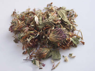 50g Dried Red Clover Whole Flower leaf leaves  Trifollium Pratense Herb