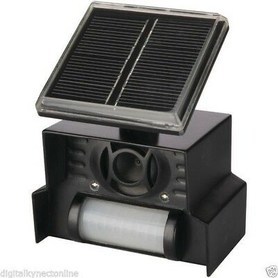 P3 Sol-Mate Solar Powered, Motion Activated Animal Chaser (P7815)