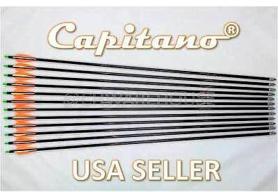 Capitano® Archery Fiberglass Target Practice Arrows w Replaceable Screw-In Tips