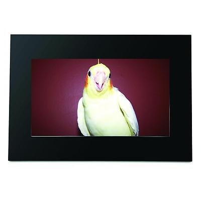 """Fluid 7"""" LCD digital picture frame"""