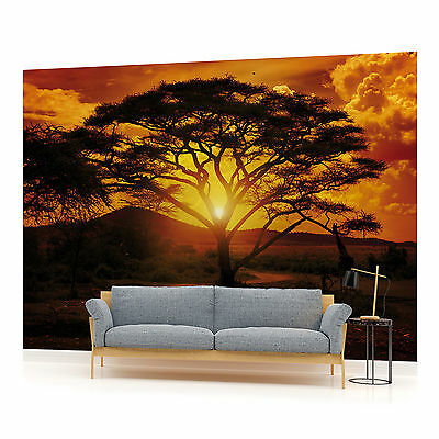 WALL MURAL PHOTO WALLPAPER PICTURE (55VE) African Sunset Landscape