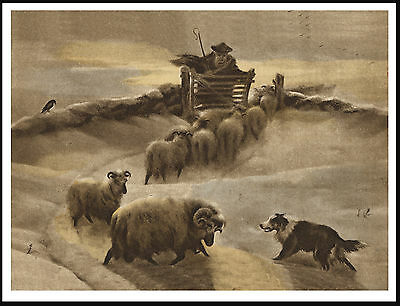 Border Collie And Shepherd And Sheep In Winter Scene Lovely Dog Print Poster