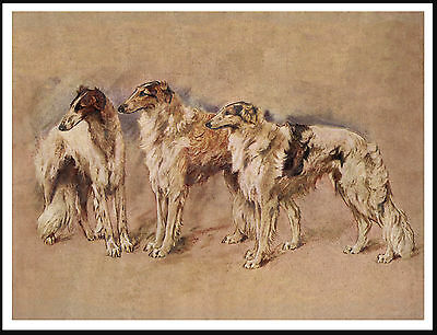 Borzoi Three Dogs Lovely Vintage Style Dog Print Poster