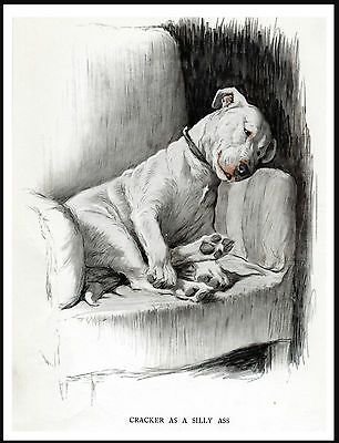 ENGLISH BULL TERRIER  DOG RESTING  IN A CHAIR GREAT VINTAGE STYLE PRINT POSTER