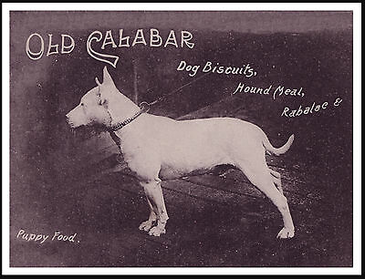 ENGLISH BULL TERRIER GREAT VINTAGE STYLE DOG FOOD ADVERT PRINT POSTER
