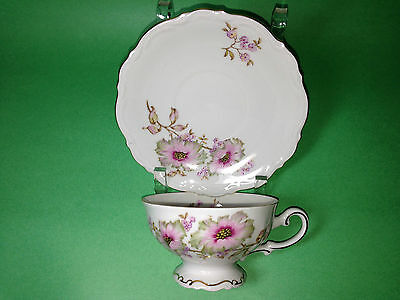 Mitterteich Bavaria Cup & Saucer Dogwood Germany 4376 59