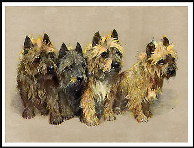 Cairn Terrier Group Of Dogs Lovely Vintage Style Dog Print Poster