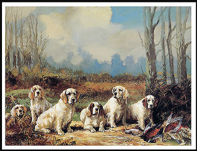 Clumber Spaniel Group Of Dogs Lovely Vintage Style Dog Print Poster