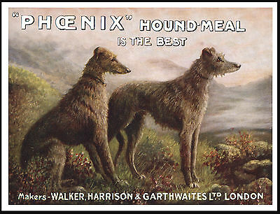 Scottish Deerhound Two Dogs On Vintage Style Dog Food Advert Print Poster