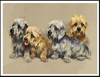Dandie Dinmont Terrier Group Of Four Dogs Lovely Dog Print Poster