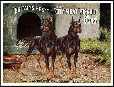 Doberman Pinscher Dogs On Great Vintage Style Dog Food Advert Print Poster