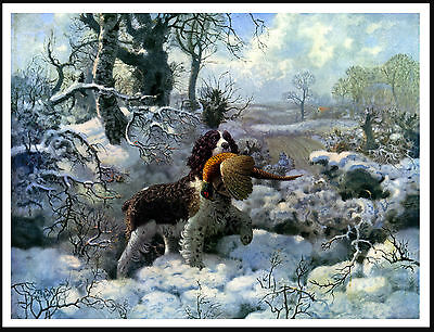 English Springer Spaniel With Bird In Winter Snow Scene Lovely Dog Print Poster