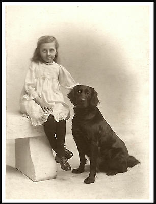 Flat Coated Retriever Little Girl And Her Dog Lovely Old Style Print Poster