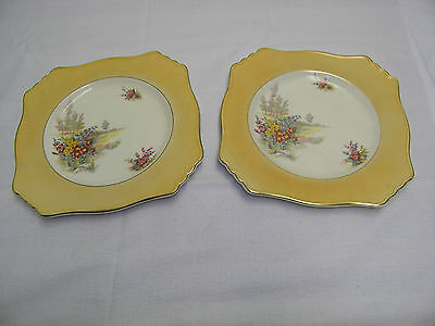 Two Royal Winton Wildflower Plates